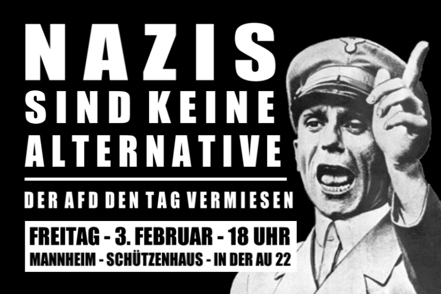 Nazis der AfD in Mannheim am  03.02. den Tag vermiesen