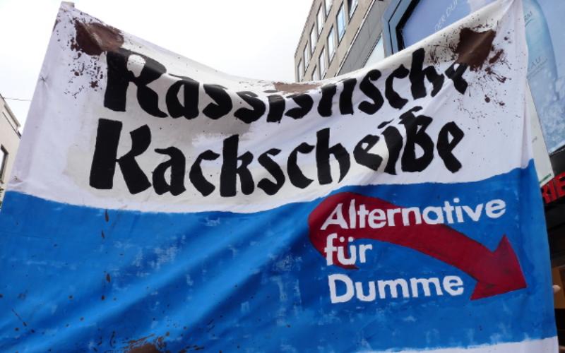Umfassendes Register über die Aktivitäten der AfD in der Vorderpfalz geplant